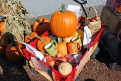 Harvest Wagon up for Raffle