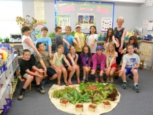 group eugenie harvest