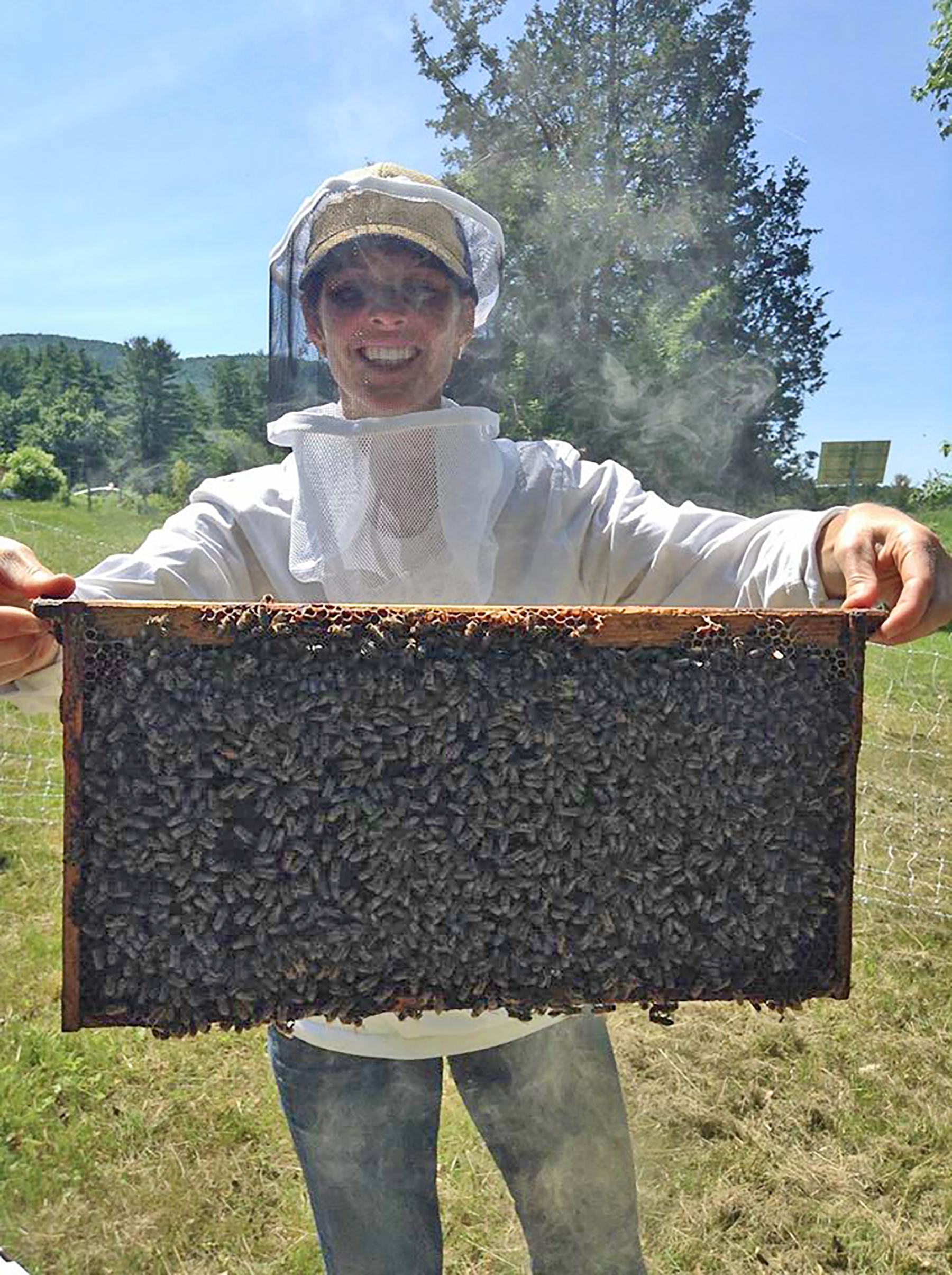 cathy-hive