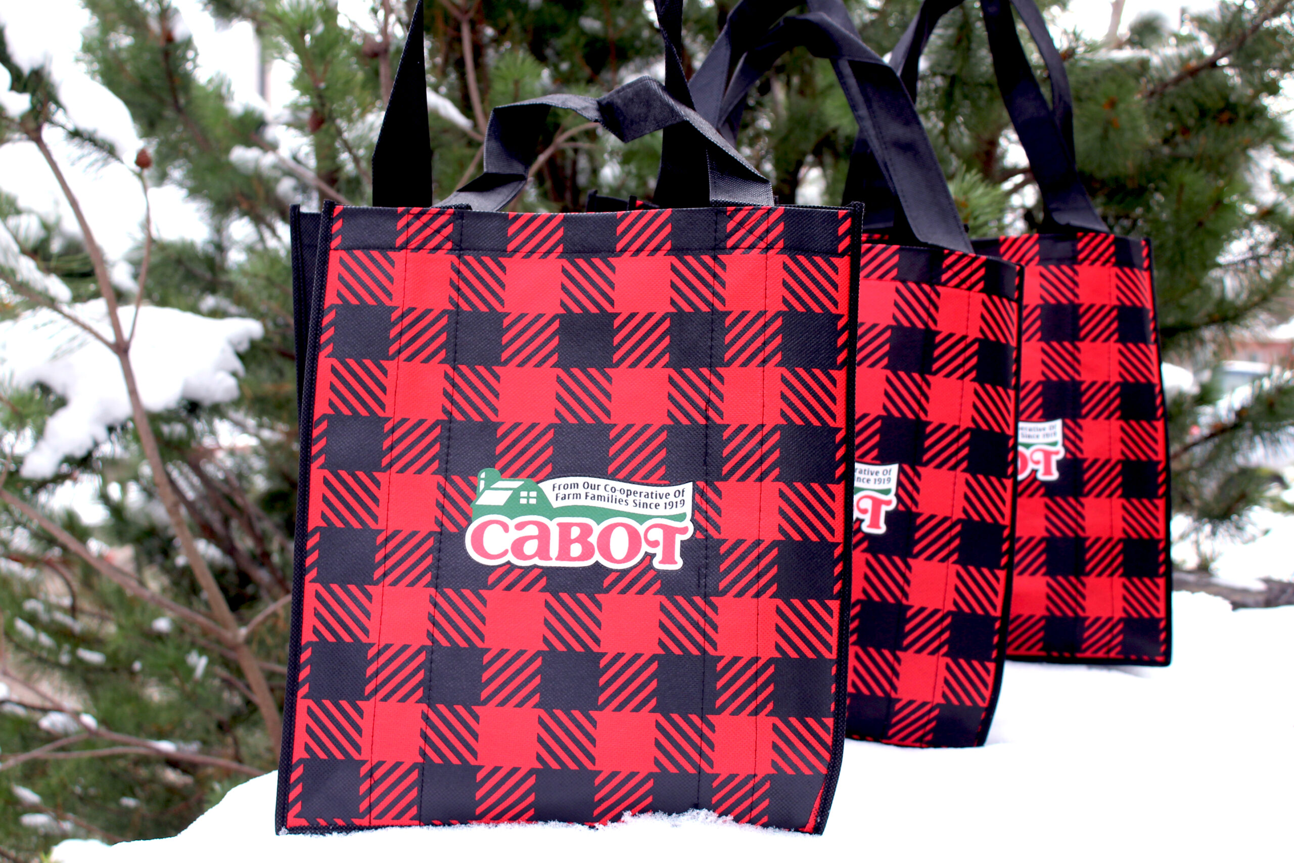cabot-bags