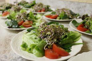 Succulent Salad!